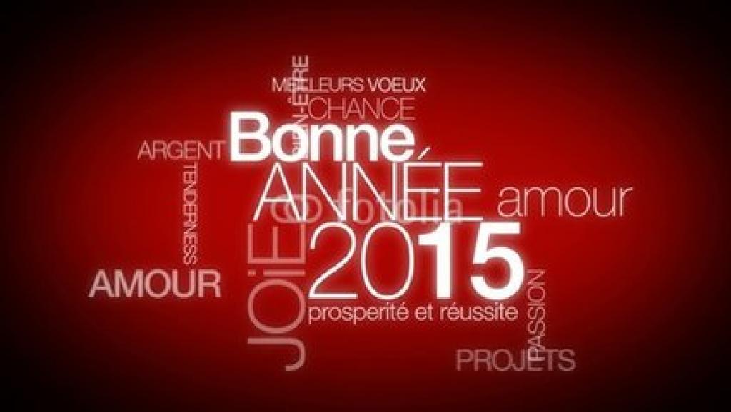 Bonne année 2015_0